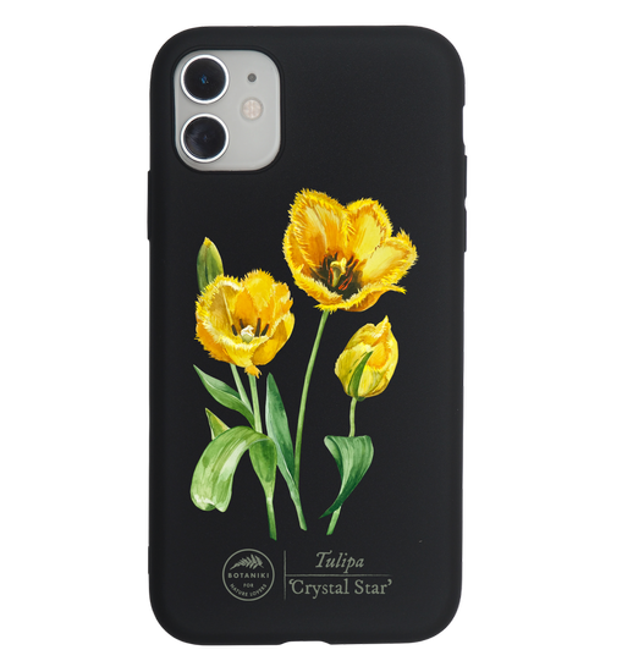 etui — tulipan 'Crystal Star'
